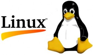 How to Troubleshoot NIC in Linux from the command line